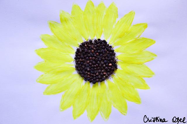 floarea soarelui1