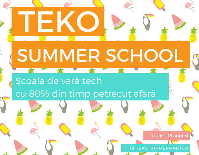 teko summer school