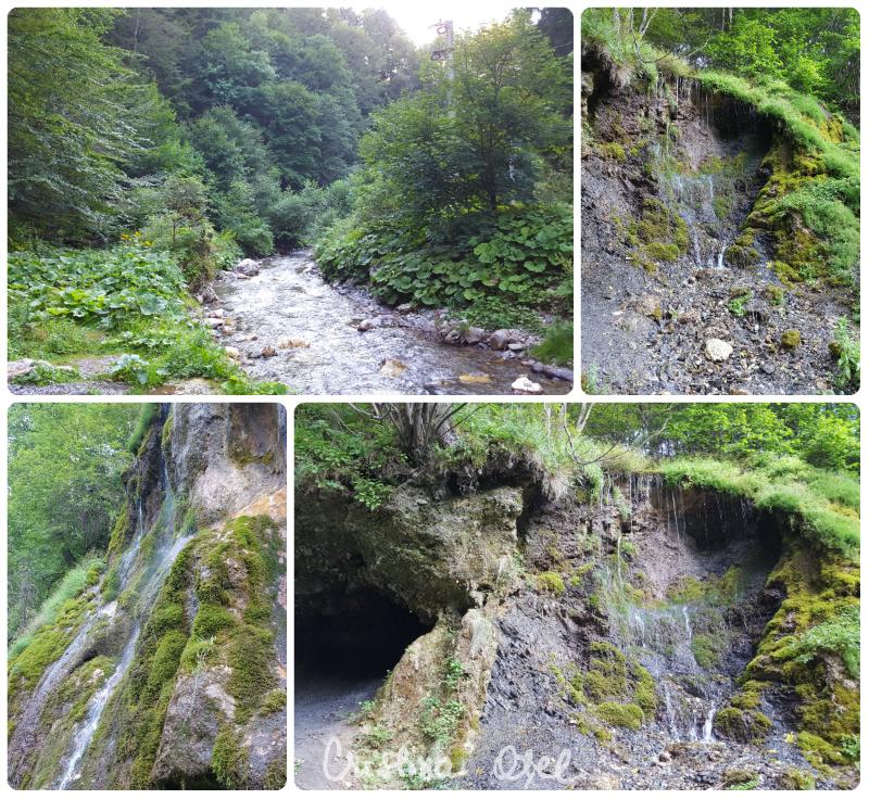Cascada Chisatoarea